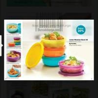 Jual Tupperware Junior Modular Bowl dr 140rb jd 73rb 4 bh Murah