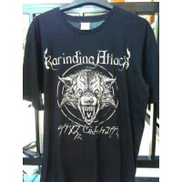 TS KARINDING ATTACK ( COVER )