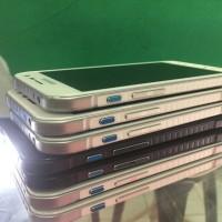 Samsung Galaxy S6 Active Batangan