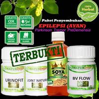 Obat Herbal EPILEPSI AYAN Paket Penyembuhan Naturindo