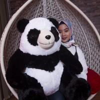 Jual Boneka Panda Besar 80 CM Original dan murah Murah