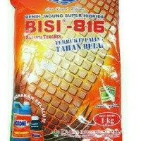 Benih Bibit Jagung Super Hibrida BISI 816(1Kg)