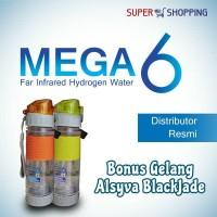 MEGA 6 Botol Terapi Diabetes ( Bonus 1 Gelang Alsyva)