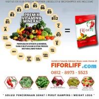 Obat Pelangsing Herbal Bubuk/Jus Fiforlif (Fiber For Our Life)
