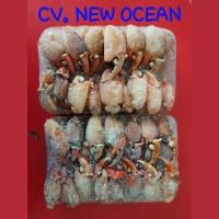 Capit Kepiting / Cingkong Kepiting Harga GROSIR