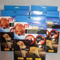 Sports Dog Harness Set untuk Anjing dan Kucing Maine Coon Ras Besar