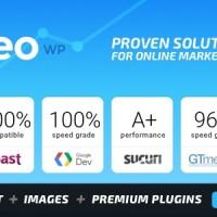 SEO WP: Online Marketing, SEO, Social Media Agency - v1.8.7