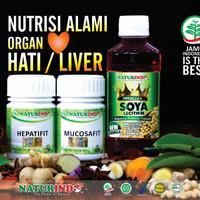 Obat Herbal LIVER Paket Penyembuhan Naturindo