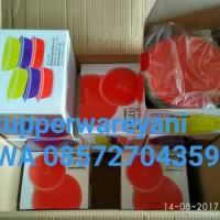 Jual Tupperware Multi Bowl Set (6) Murah