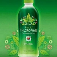 Chlorophyll Sinergy Klorofil Daun Hijau Mint