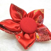 Bros Bross Kain Chinesse Red Brooch