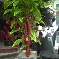 Jual pohon hias plastik | golden lucky| daun hijao Murah