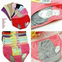 Celana Dalam Anti Bocor / CD Khusus Menstruasi /