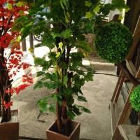 Jual pohon hias|daun anggur| bahan kain plastik Murah