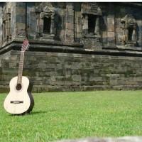 Jual Gitar Akustik Custom Murah