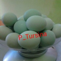 Telur asin brebes P Tursina varian original