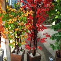 Jual pohon hias westeria bugendvil dan sakura merah| bahan plastik Murah
