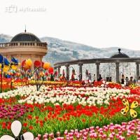 Tiket Masuk Everland Seoul - Korea Selatan (Anak - Anak)