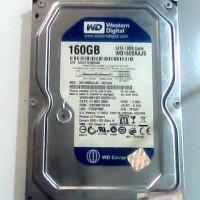 Hardisk 160 Gb Wdc Blue untuk PC