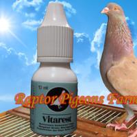 Vitarest - Multivitamin Konsentrasi Tinggi Untuk Merpati