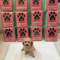 Paw Underpad Pee Pad Toilet Training Anjing 60x90 isi 10 Lembar