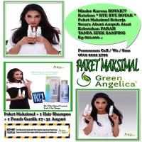 Jual GREEN ANGELICA PENUMBUH RAMBUT green angelica penumbuh rambut Murah