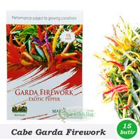 Tanaman Bibit Benih/Bibit Cabe Hias Garda Firework (Maica Leaf)