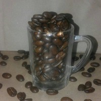 Jual Coffee Bean Arabica Toraja 100gr Murah