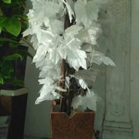 Jual pohon plastik hias | daun anggur putih Murah