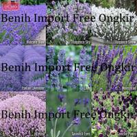 Benih Bunga Lavender Campur 9 Jenis Import UK - Lavender Mix 9 Kinds i