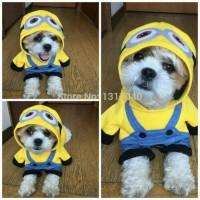 Jual Hobi PREMIUM baju hewan minion kostum anjing kucing pet cloth dog Murah