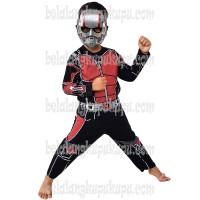 Jual Baju Anak Kostum Topeng Superhero Ant Man Antman Murah