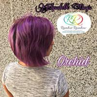 Jual I WANT THAT ORCHID - cat rambut ungu violet purple manic panic pravana Murah