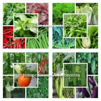 Paket Benih 20 Jenis Sayuran +Bonus