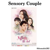 DVD Drama Korea Sensory Couple