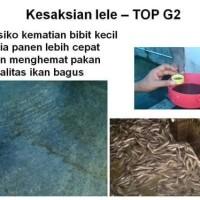 Jual TOP G2 PUPUK ORGANIK TANAMAN (HWI)  Murah