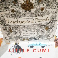 Enchanted Forest An Inky Quest Coloring Books