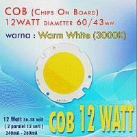 LED HPL 12 Watt Jumbo Warm White COB 60/42 mm