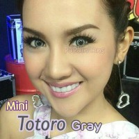 mini totoro gray murah