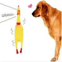 mainan ayam karet gigitan anjing mainan hewan shrilling chicken squeak