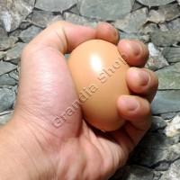 Telur Ayam Mainan Plastik Mirip Asli