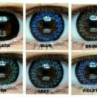 NEW ARRIVAL Softlens Clover PHB030