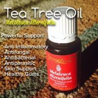 Melaleuca Alternifolia Young Living Essential Oil 15ml