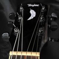 Gitar Akustik Taylor Black Gloosy