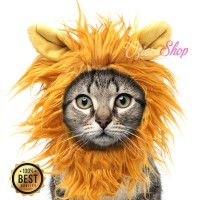 Baju Kucing Anjing Model Wig / Rambut Singa Kitten Coklat Muda