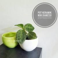 Pot keramik mini - pot kaktus - pot sukulen - pot tanaman