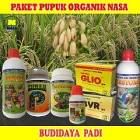 Jual Paket Pupuk Budidaya Padi Organik Nasa Lengkap Murah