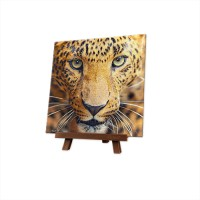 Jual Pintoo Puzzle XS256 P1178 Close Up Leopard Murah
