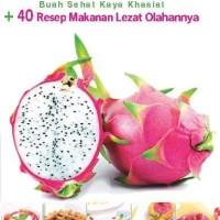 Buku BUAH NAGA - Buah Sehat Kaya Khasiat + 40 Resep Makanan Lezat