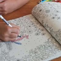 Jual Coloring Book Secret Garden Murah